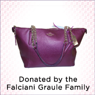 Designer bag donated by the Falciani Graule Family